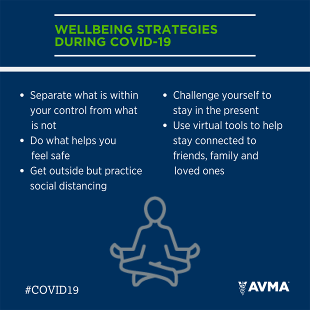 Wellbeing strategies for veterinary professionals during COVID-19
