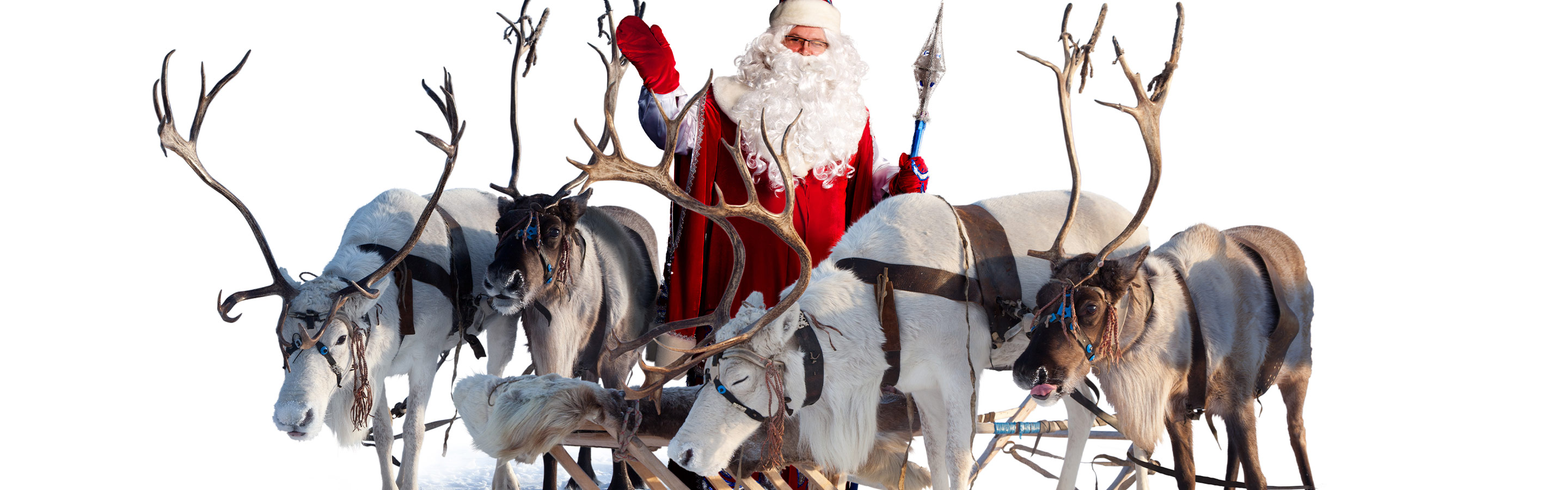 Santa stands with his reindeer