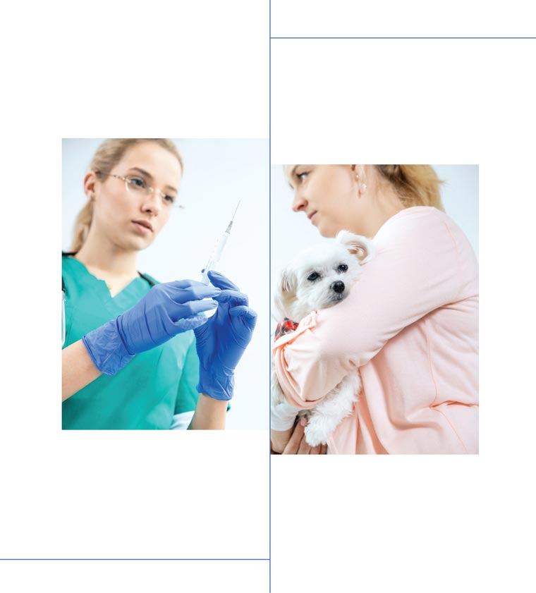 Veterinarian with a needle and syringe (left) and a pet owner holding her dog (right)