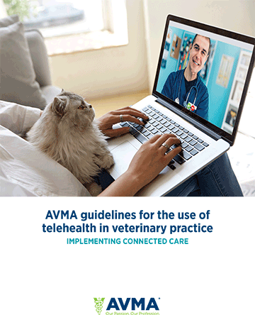 AVMA veterinary telehealth guidelines
