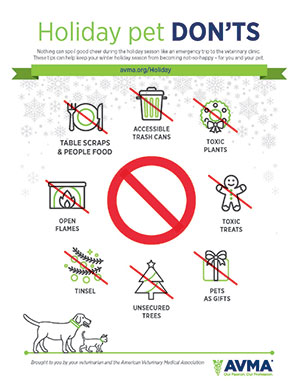 Holiday pet don'ts tips