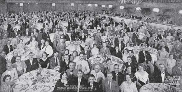 1925 - 1935 | American Veterinary Medical Association
