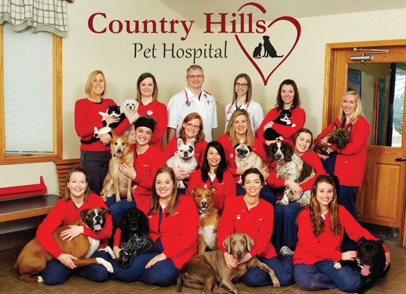 Country Hills Pet Hospital staff