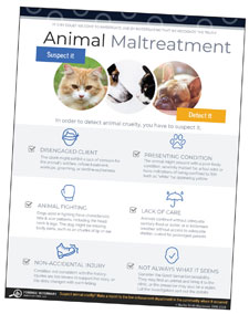 Animal Maltreatment infographic thumbnail