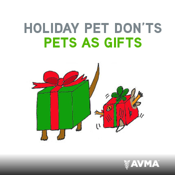 Holiday Pet Don'ts - Pets as Gifts
