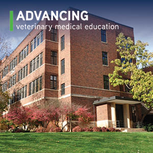 Advancing veterinary medical education