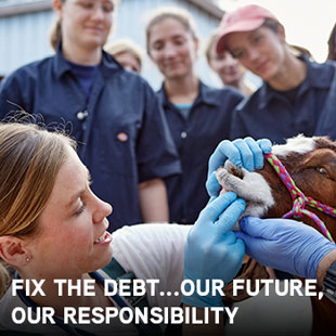 Fix the debt...Our Future, Our Responsibility