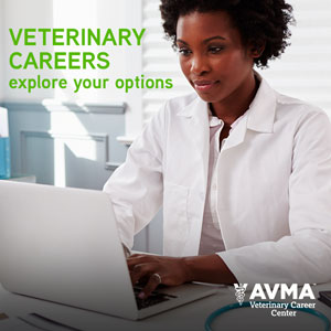 Veterinary Careers Explore Your Options