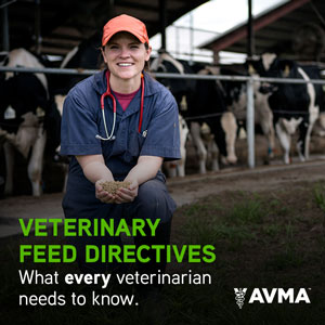 Veterinary Feed Directives What every veterinarian needs to know.