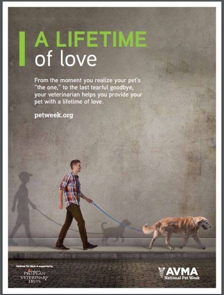 A Lifetime of Love - National Pet Week Poster
