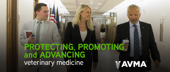 Protecting, promoting and advancing veterinary medicine