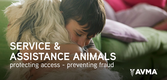 Service & Assistance Animals Protecting Access - Preventing Fraud