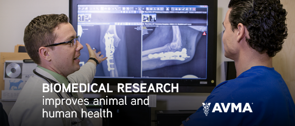 Biomedical Research Improves Animal and Human Health