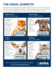 Preventive Pet Healthcare Poster: The Usual Suspects