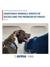 Assistance animals: Rights of access and the problem of fraud