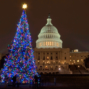 Capitol_Christmasdecorations