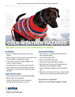 Cold Weather Animal Safety American