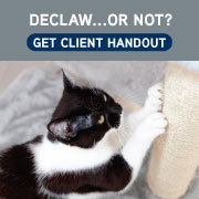 Declaw...Or Not? Get Client Handout
