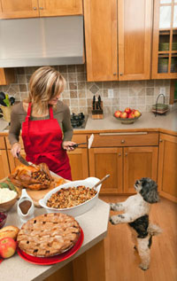 Thanksgiving Pet Safety American