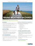 Warm weather hazards poster