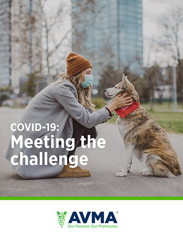 COVID-19 Meeting the challenge